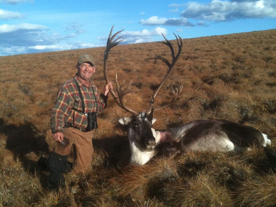 Cooks Caribou Hunt