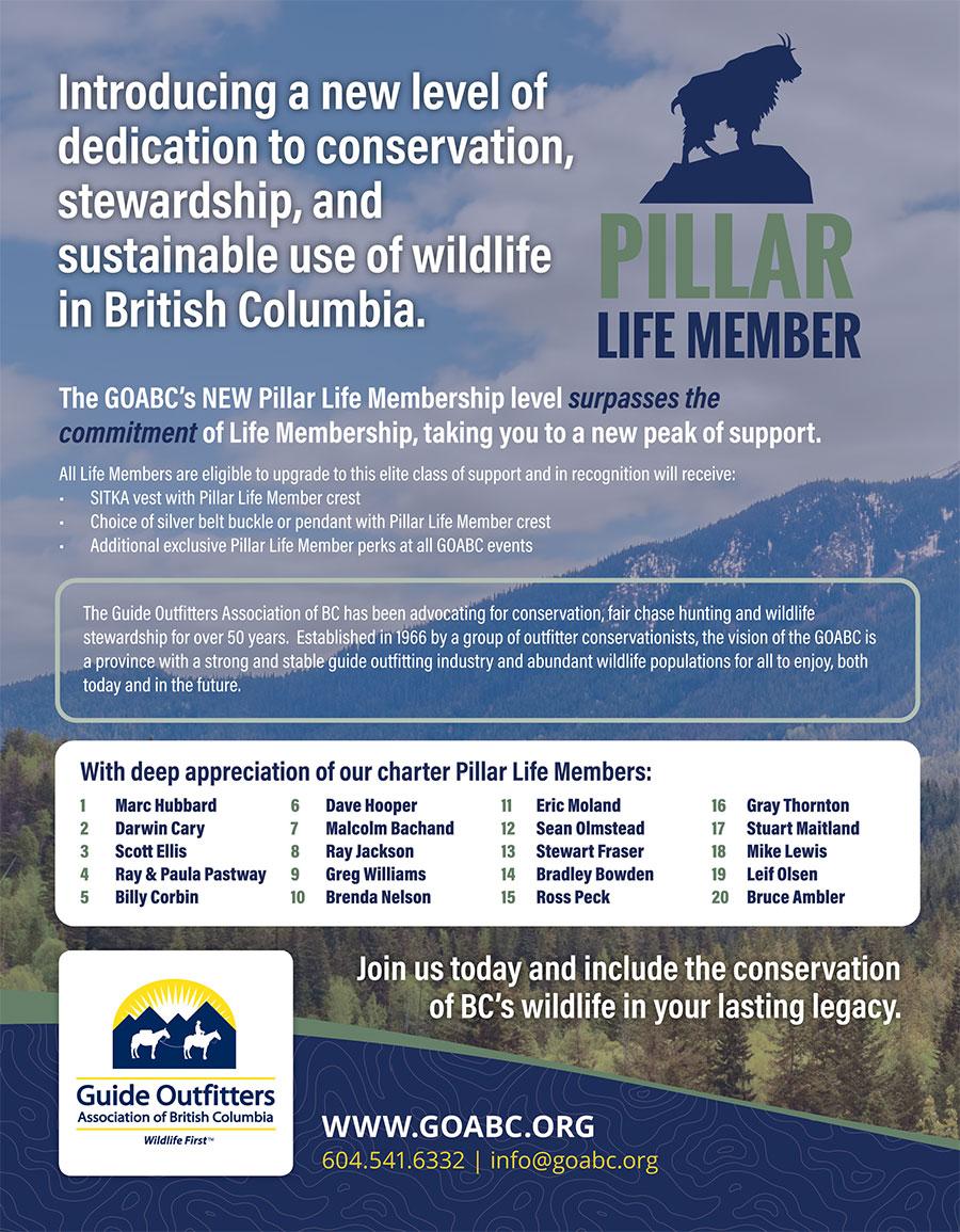 Pillar Life Membership Feature