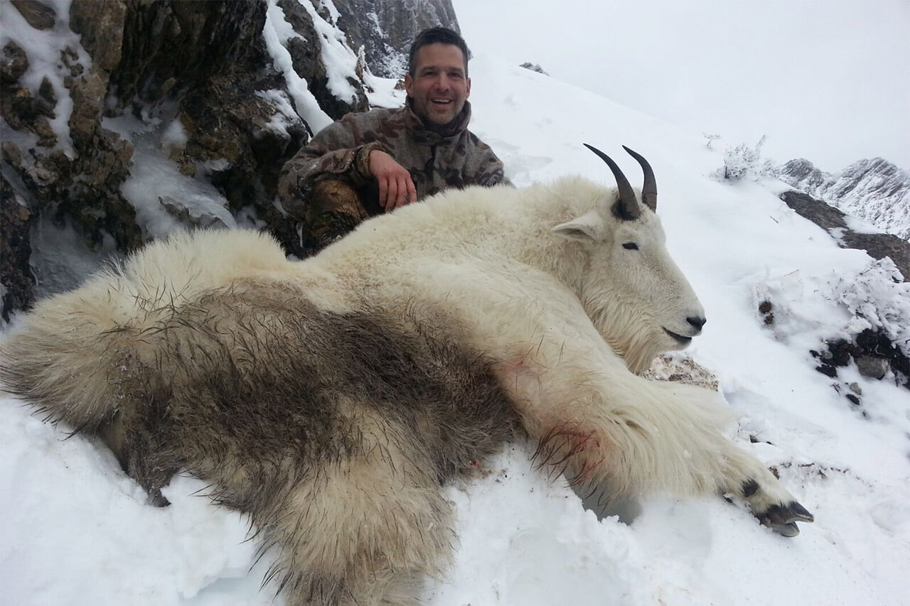 Mountain Goat Hunting Story
