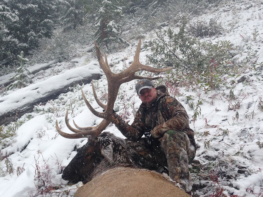 Elk Hunt with Bugle Basin Outfitters