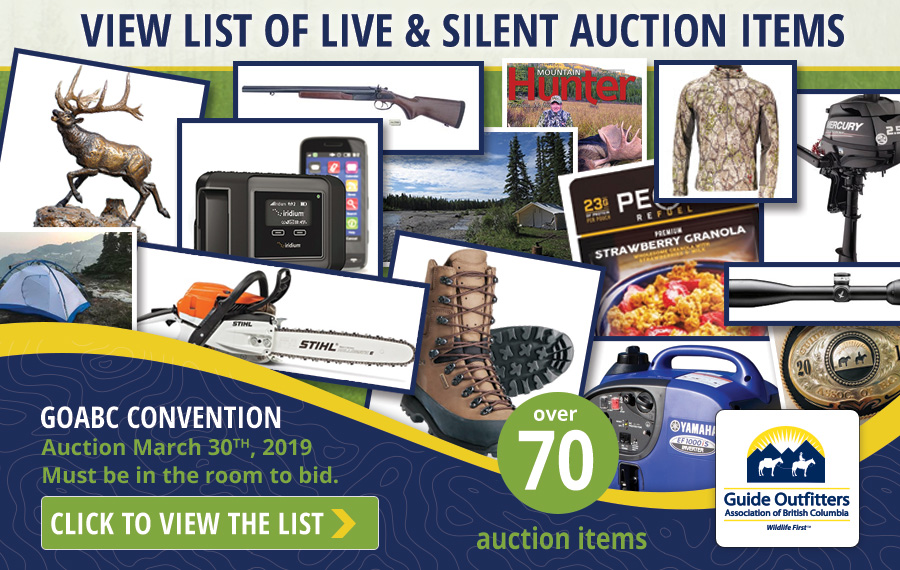 Convention Auction Items