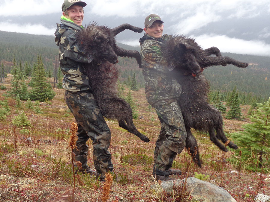Wolf Hunt Fehr Game Outfitters