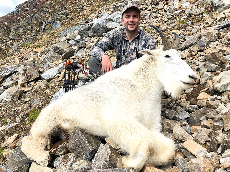 Mountain Goat Fall 2020
