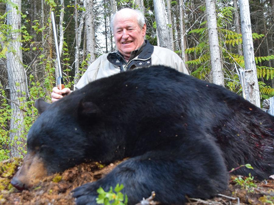 Black Bear Fall 2020